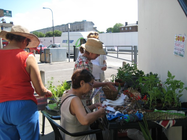 The plant sale in action